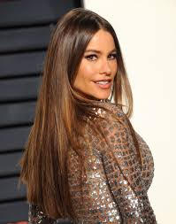 Image result for sofia vergara