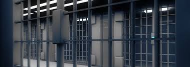 The Long Term Consequences Of Juvenile Detention