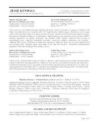 Federal Government Resume Format Stunning Format Of Job Resume Best Resume Format For Jobs Resume Format Best