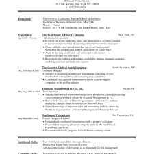 Professional Resume Format Curriculum Vitae For General Manager
