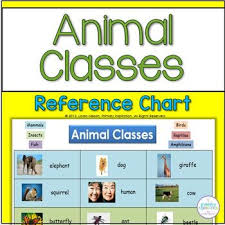 Animal Classes Reference Chart By Primary Inspiration By