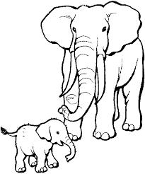 Gratis Wilde Dieren Kleurplaten Voor Kinderen 12