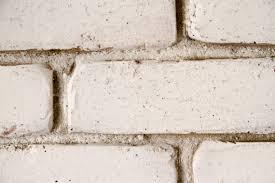 Milk Paint on Brick wall ...