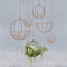 Air Plant Display 14 Ways To Decorate With Air Plants Aka The New Succulent
