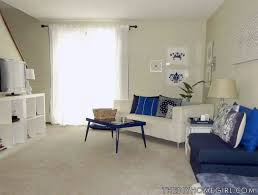 82 Best Living Room Images On Pinterest  Family Rooms For Silver And Blue Living Room