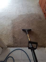 wool carpet steam cleaning