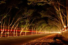 Along The Lighted Path India A Lighted Path Forward The Yin And Yang Of Life