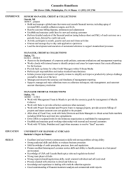 Collector Resume Examples