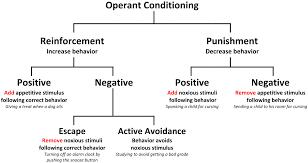 Diagram Of Operant Conditioning Raffaellamilanesi Net