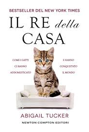 Il re della casa (Italian Edition) - Kindle edition by Tucker, Abigail.  Crafts, Hobbies & Home Kindle eBooks @ Amazon.com.