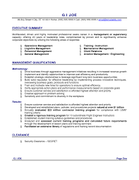 Executive Resume Examples 2017 Resume Summary Example Studentresumetemplatesorg 82