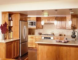 Small Kitchens With Islands Designs Modern Doors Refrigerator Classy Kitchen Apartment Design