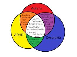 Actually Dyspraxic Cw Badly Made Pie Charts Venn Diagrams