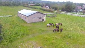 3 8 Acre Parcel With Pasture Fencing And Horse Barn
