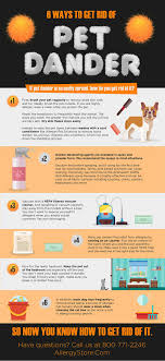 What Is Pet Dander And How Do You Get Rid Of It