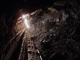 Image result for mineri poze