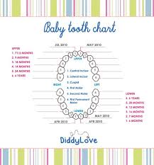 Tooth Chart To Add To Baby Scrapbook Tooth Chart Teeth