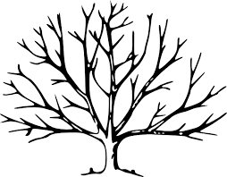 Small Picture Trees Without Leaves Coloring Pages Tree Coloring Pages Autumn