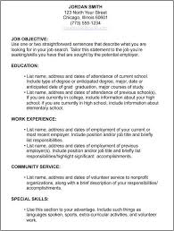 Human Services Resume Templates Extraordinary Human Services Resume Objective Unique Job Application Resume