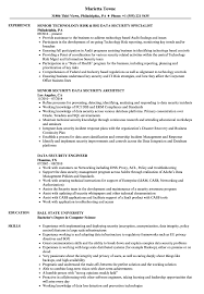 Data Security Resume Samples Velvet Jobs