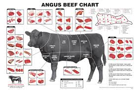 Cow Parts Chart What Everybody Ought To Know About Beef Cuts Clover