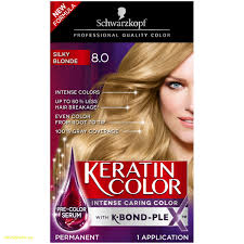 Lovely Best Hair Color Gray Coverage