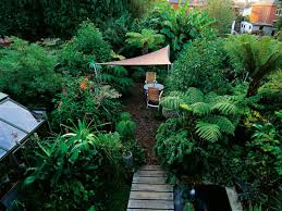 Small Picture twylas messy to marvelous garden in minnesota fine gardening