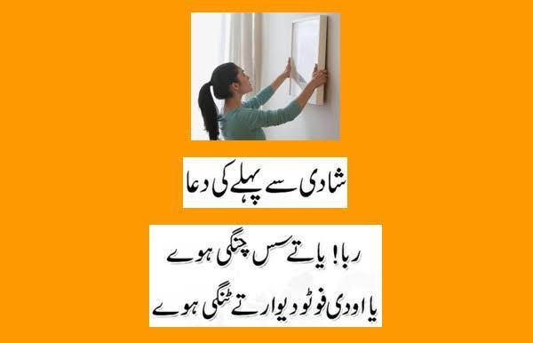 pakistani punjabi funny status