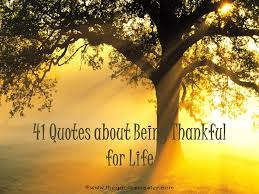 Quotes About Being Thankful Extraordinary 48 Quotes About Being Thankful For Life