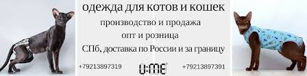 U:ME <b>Одежда</b> для котов, <b>кошек</b>, сфинксов | ВКонтакте