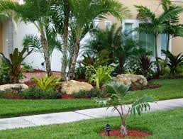 Tree landscaping ideas Front Yard Creative Of Front Yard Tree Landscaping Ideas Tropical Front Yard Landscaping Ideas With Palm Trees This For All Garden Decors Creative Of Front Yard Tree Landscaping Ideas Tropical Front Yard