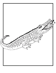 Small Picture Free Printable Crocodile Coloring Pages For Kids
