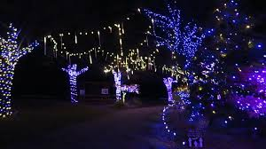 Lv Zoo Lights Lehigh Valley Zoo Winter Light Spectacular Youtube