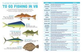 Chesapeake Bay Fish Identification Chart Theres No Offseason For Fishing Fishing Spots In Virginia