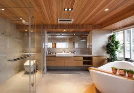 Image Design Ideas Download Natural Wooden Ceiling Design For Bathroom Mapajunctioncom Mapajunctioncom Natural Wooden Ceiling Design For Bathroom
