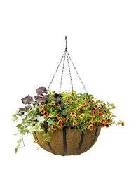 AquaSav Oxford Hanging Basket, 18