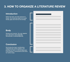 literature review example apa format literature review parlo buenacocina co