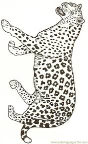 Small Picture Leopard Reversed Coloring Page Free Jaguar Coloring Pages