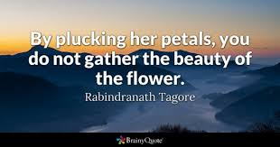 Short Beauty Quotes For Her Best of Beauty Quotes BrainyQuote