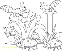 insect coloring pages preschool picture concept for preschoolers toddlers with bugs of free