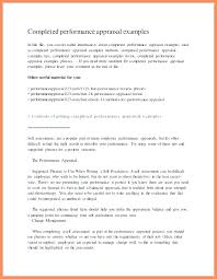 evaluation example essay sample manager performance review examples operations