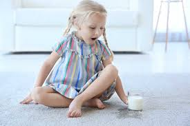 how to clean milk from carpets 6