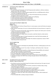 Youth Director Resume Samples Velvet Jobs