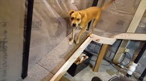 how to make a pet door out of a basement window including go pro doggie cam