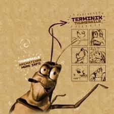 terminix houston tx. Modren Terminix Photo Of Exterminate Bad Bugs With Terminix  Houston TX United States  Don On Houston Tx