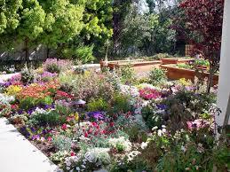 similiar southern california gardens keywords intended for california erfly garden