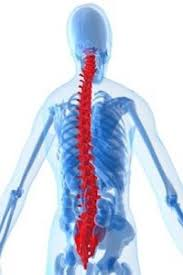 How Much Is My Spine Injury Claim Worth In California Los