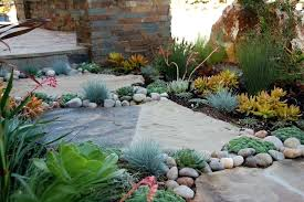 succulent front yard design colorful succulent garden on succulent landscape design small front yard landscaping ideas succulent front yard design