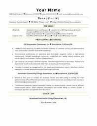 Best Software Engineer Resume Luxury Resume Career Summary Examples