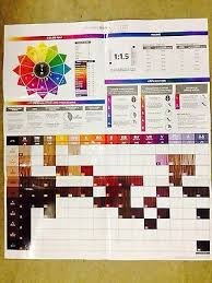 Paul Mitchell Color Chart 2018 Paul Mitchell Pm Shines Colors Chart Sbiroregon Org